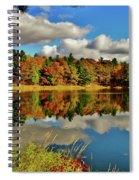 Falling Slowly Spiral Notebook