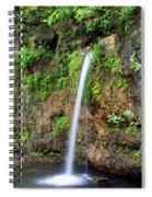 Falling Spring Spiral Notebook