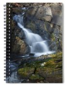 Falling Waters In February #2 Spiral Notebook