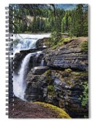 Falls 3 Spiral Notebook