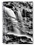 Falls And Trees Spiral Notebook