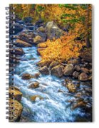 Fall's Rush To South Lake Spiral Notebook