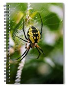 False Threats Spiral Notebook