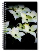 Family Gathering Spiral Notebook