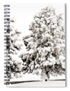 Family Of Trees Spiral Notebook