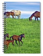 Family Picnic Spiral Notebook