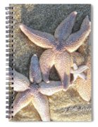Family Starfish 2 Spiral Notebook