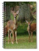 Family Walk Spiral Notebook