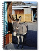 Famous Route 66 Burro Spiral Notebook