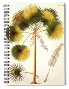 Fan Palm Spiral Notebook