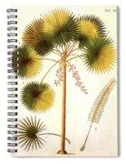 Fan Palm Spiral Notebook