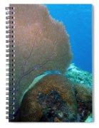 Fan Vs. Brain Spiral Notebook