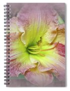 Fancy Daylily In Pink And Yellow Spiral Notebook