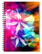 Fancy Pansy Candy Spiral Notebook