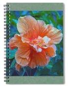 Fancy Peach Hibiscus Spiral Notebook