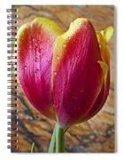 Fancy Tulip Spiral Notebook