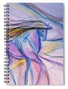 Fancy Walk Spiral Notebook