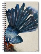 Fantail Flycatcher Spiral Notebook