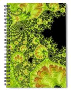 Fantastic Abstract On Black Spiral Notebook