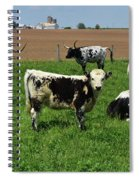 Fantastic Farm On A Spring Day With Cows Spiral Notebook