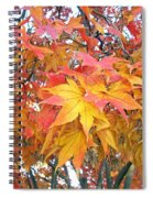 Fantasy Of Fall Spiral Notebook