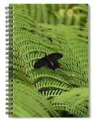 Far Far Away Spiral Notebook