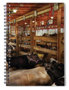 Farm - Cow - Checking Out The Ladies Spiral Notebook