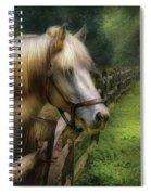 Farm - Horse - White Stallion Spiral Notebook