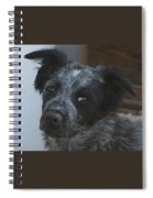Farm Puppy  Spiral Notebook