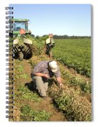 Farmer Inspects Peanut Field Spiral Notebook