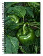Farming Green Peppers Spiral Notebook
