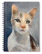 Farmyard Cat Spiral Notebook