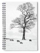 Farndale Winter Spiral Notebook