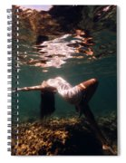 Fashion Mermaid II Spiral Notebook