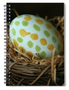 Fashionable Egg  Spiral Notebook