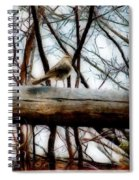 Fat Sparrow Fat Fence Spiral Notebook