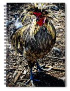 Fat Tuesday - Mardi Gras Chicken Spiral Notebook