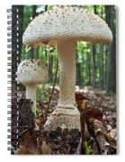 Father And Son Mushrooms Spiral Notebook