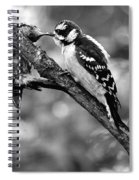 Father Feeding Son Spiral Notebook