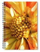 Fearless Spiral Notebook