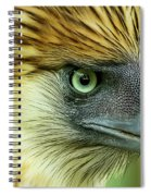 Fearless Philippine Eagle Spiral Notebook