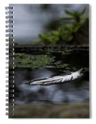 Floating On A Still Pond Spiral Notebook