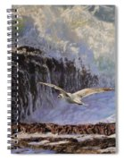Feather And Foam Spiral Notebook