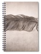 Feather Spiral Notebook