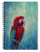 Feathered Friend Spiral Notebook