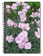 Feathered Pink Spiral Notebook