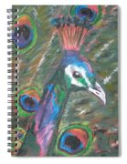 Feathered Splendor Spiral Notebook