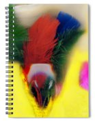 Feathers In Wine Glass Spiral Notebook