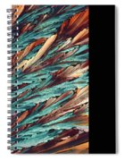 Feathers Of Crystal 2 Spiral Notebook