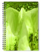 Feathers Of Light - Green Spiral Notebook